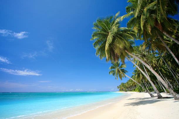 bahamas-wedding-guide